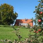 biohof-strassenmuehle-4