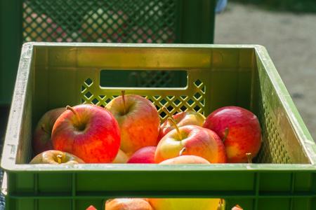 Bio Äpfel per Post vom Obsthof Straßenmühle